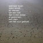 IMG_9476